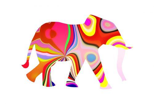 elephant elephant with pattern pattern elephant