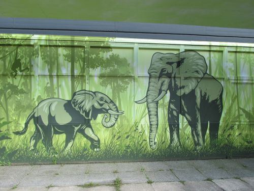 elephant wall art wall