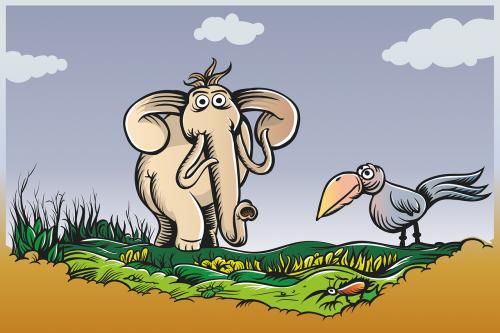 elephant bird raven