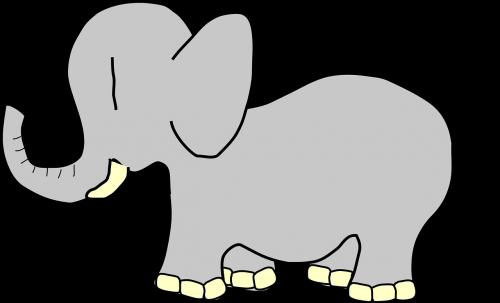 elephant animal nature
