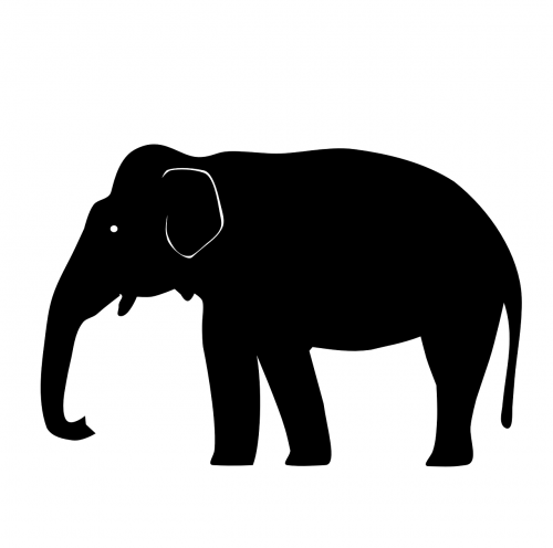 elephant asian silhouette