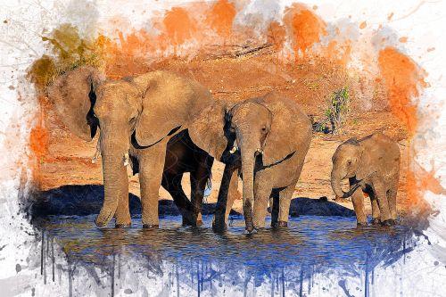 elephants animal art
