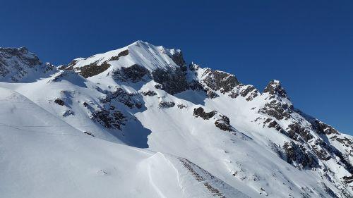 elfer head kleinwalsertal alpine