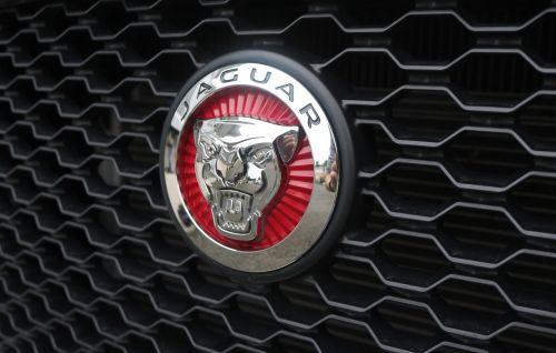 emblem auto logo