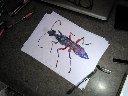 emerald cockroach wasp  ballpoint  ballpoint art