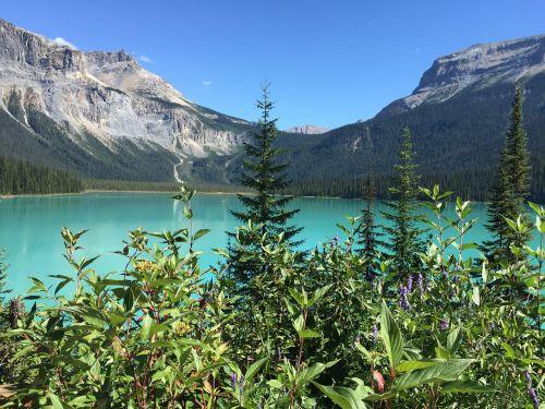 emerald lake canada travel