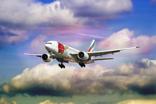 emirate airline rose