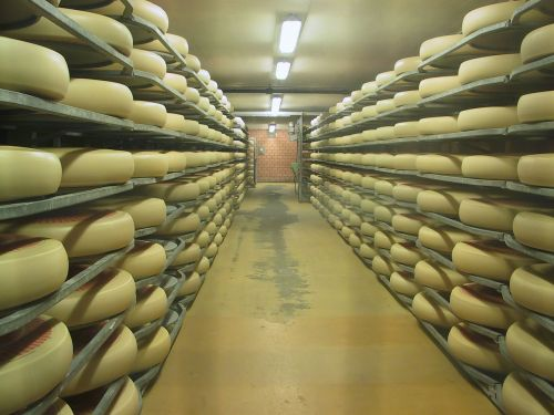 emmental cheese cheese dairy