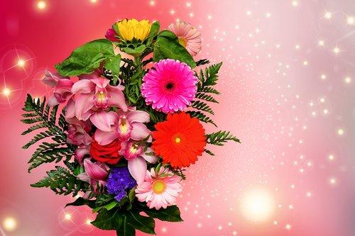 emotions  flowers  valentine's day