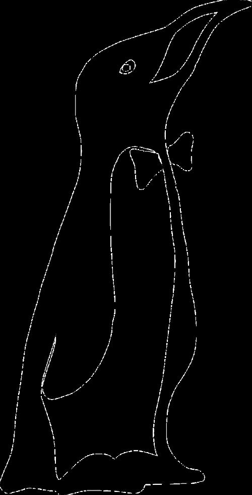 emperor penguin penguin bow tie
