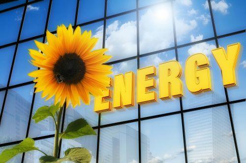energy sun flower font