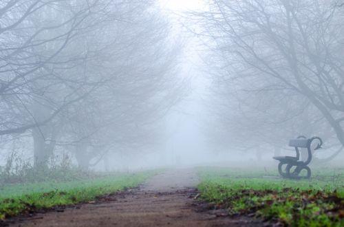 England Fog