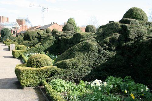 England Garden Hedges