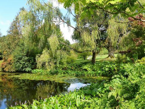 english garden water garden
