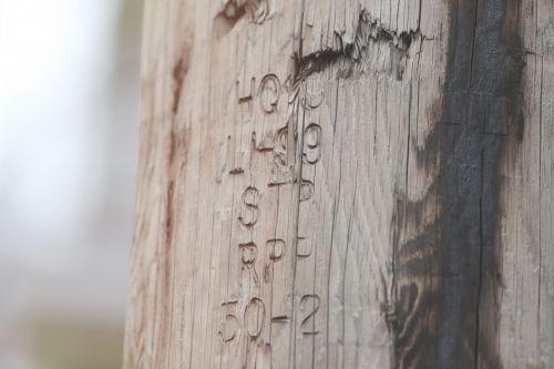 engraving carving wood