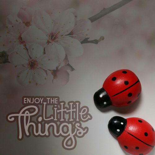 enjoy the little things live courage