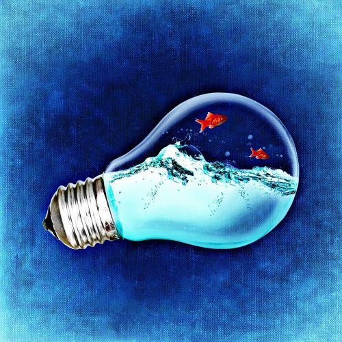 environment nature ideas