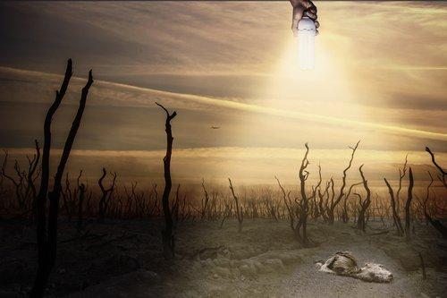 environment  chemtrails  dead