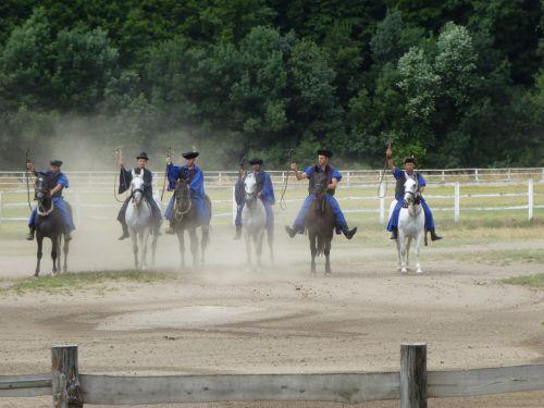 equestrian droves art ride rural