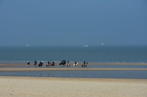 equestrian group beach north sea