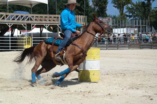 equiblues rodeo barel racing