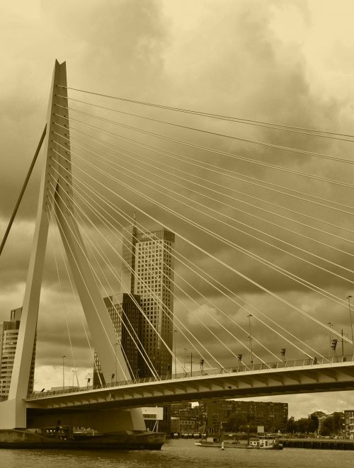 erasmus bridge transition mystical