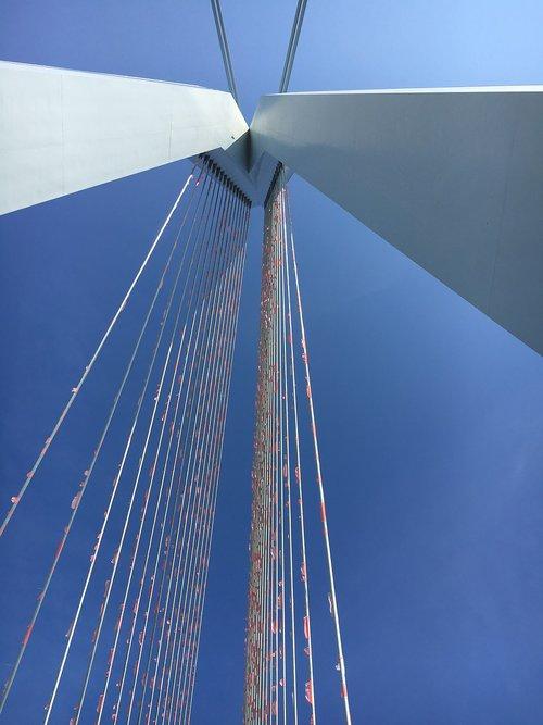 erasmus bridge  rotterdam  flags