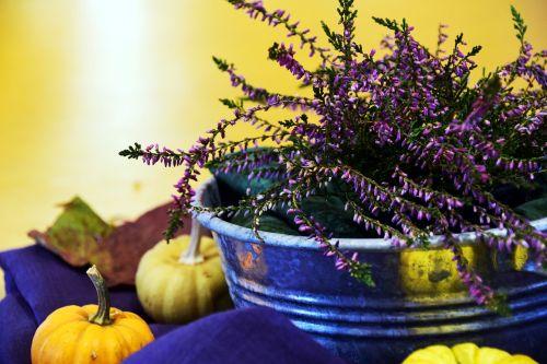 erika arrangement autumn