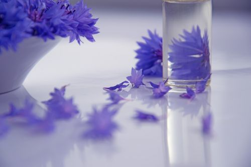 essential oils cosmetology flowers
