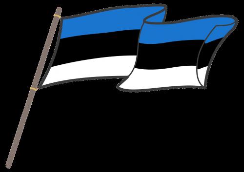 estonia flag graphics