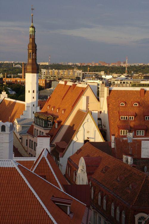 estonia tallinn old town