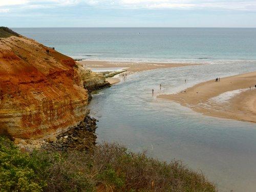 estuary  river  coast