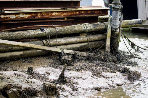 estuary detritus mud rope