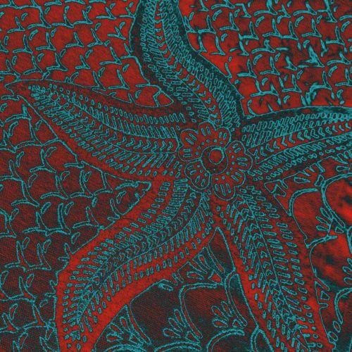Starfish - 6