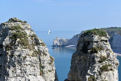 etretat  cliffs  hang gliding