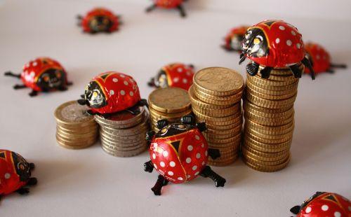 euro coins ladybug
