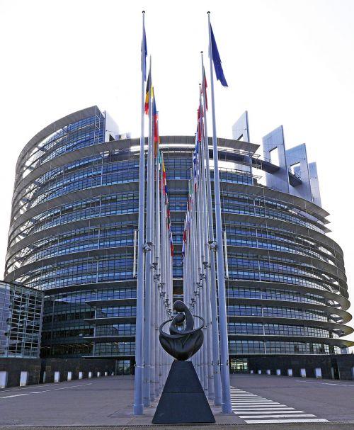Europos Parlamentas,Strasbourg,architektūra,parlamentas,eu,Europos Sąjunga,ue,rotunda,france,lankytinos vietos,pastatas,Europos miestas,Europa,pavaduotojas,Alsace,šiuolaikiška,įvestis,įvesties sritis,vėliavos,vėliavos miškas,nacionalinės vėliavos