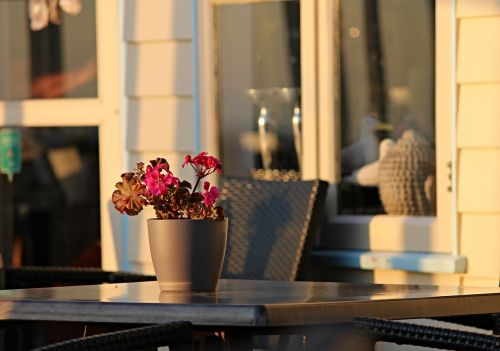 evening light beach bar decoration