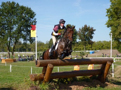 horse eventing cross