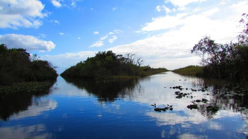 everglades miami landscape