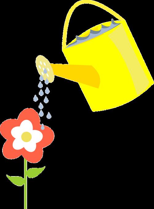 ewer watering flower