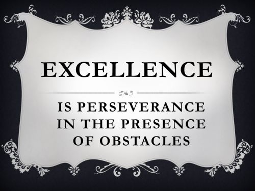 Excellence Perseverance