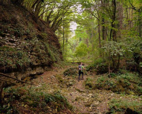excursion forest val borago