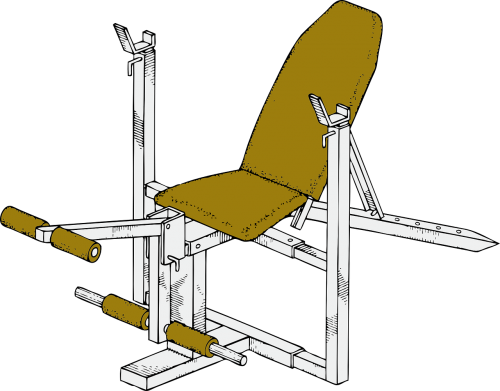 exercise bench workout exercise equipment