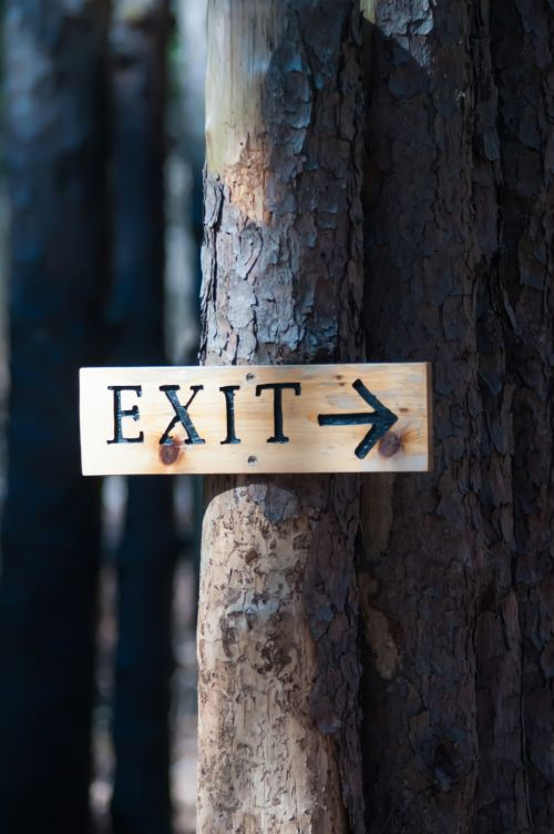 Exit Sign On A Tree