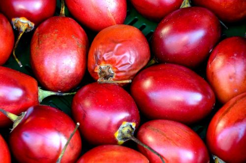 exotic tropical fruit left untreated