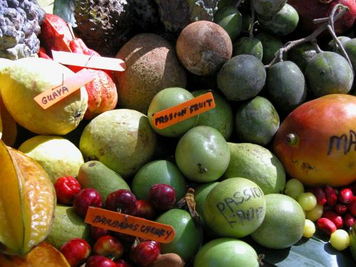 Exotic Fruit For Sale