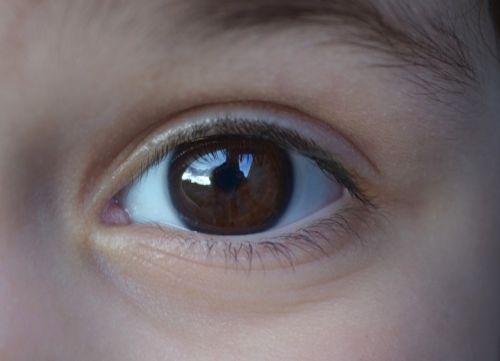 eye child face