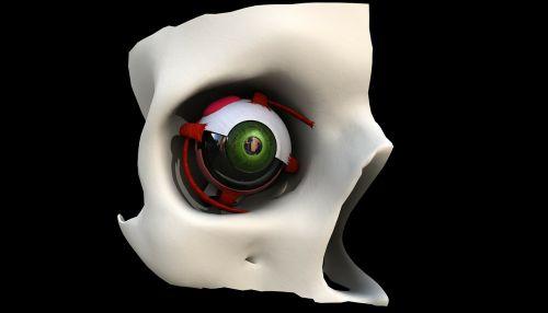 eye eyesight eyes