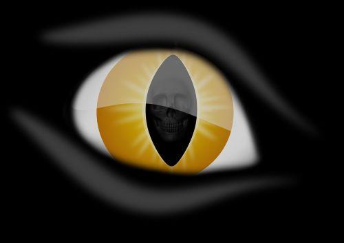 eye skull iris